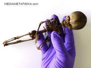 Misteri Atta Boy, Sepupu Alien Mungil dari Gurun Atacama
