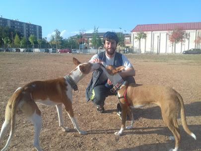Soy Germán, Educador Canino Autorizado CV-ACC-236 y colaborador de protectoras de animales