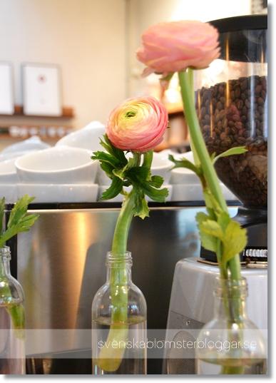 da matteo, cafe göteborg, blommor cafe göteborg, blommor cafe, flowers coffee, flowers café