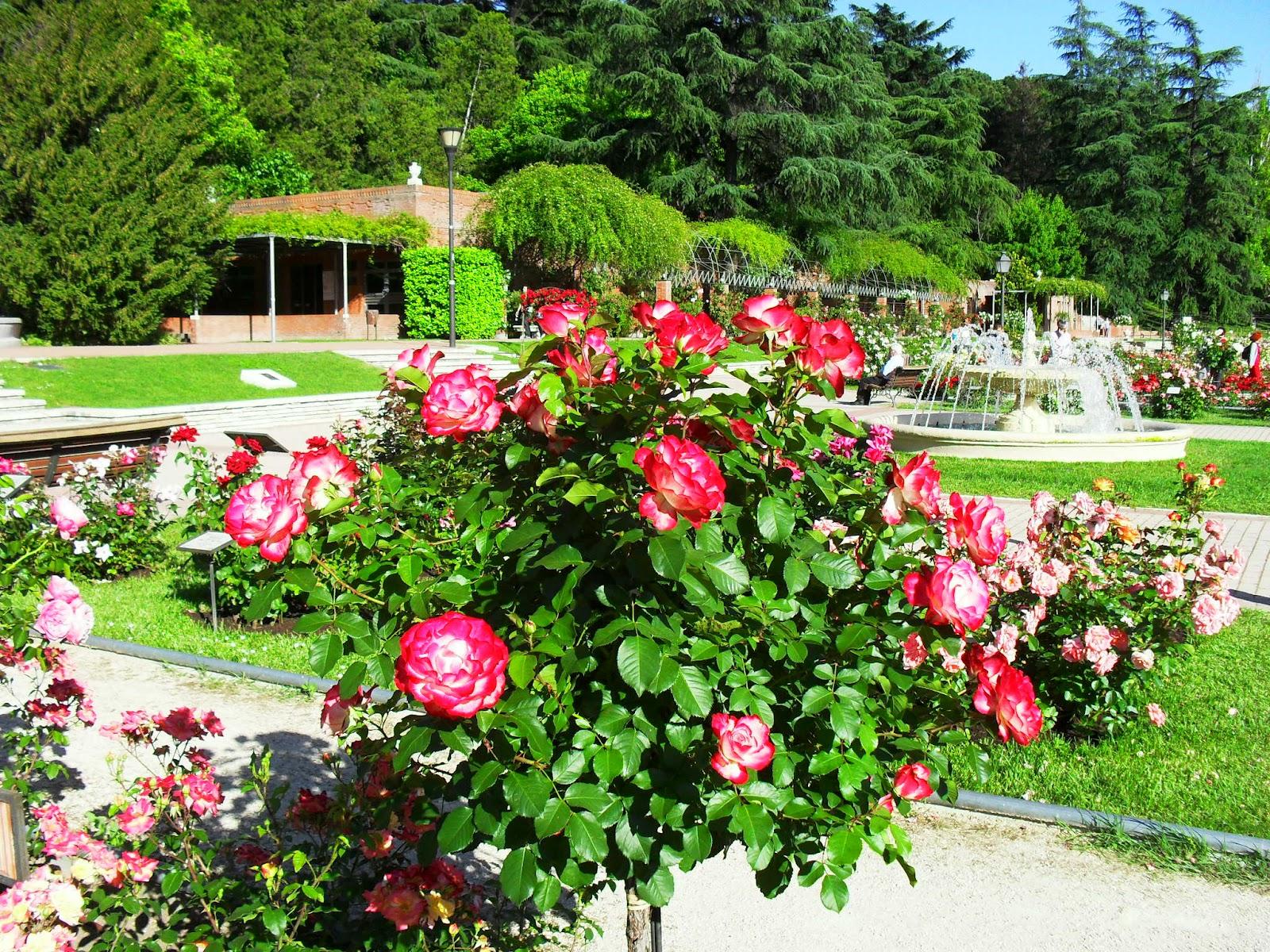 Arte y jardiner a el jard n de rosas for Jardines grandes