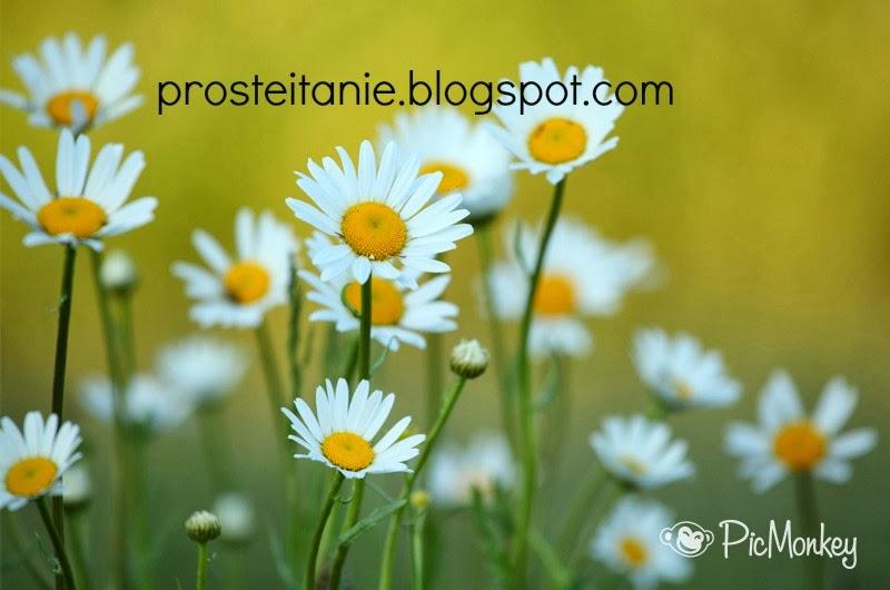 prosteitanie.blogspot.com