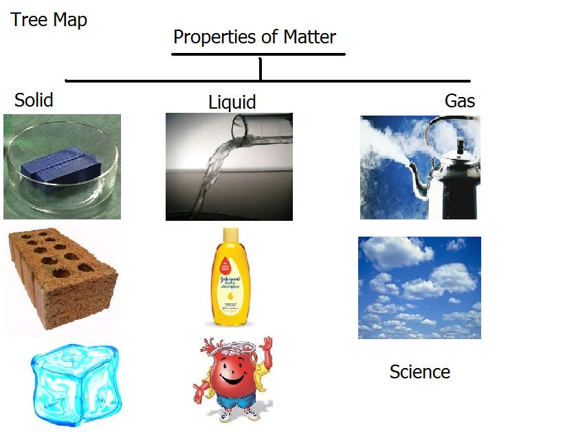 Thinking Map Properties Of Matter Tree Map Example Solid Liquid Gas