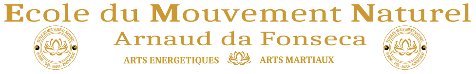 Cours de Qi Gong • Tai Chi Chuan • Bagua Zhang • Kuntao • Pencak Silat • à La Rochelle et alentours