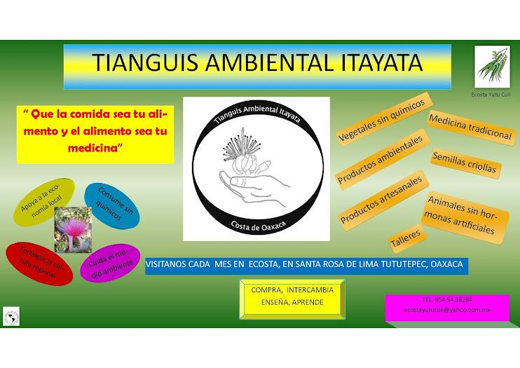 Tianguis Ambiental Itayata