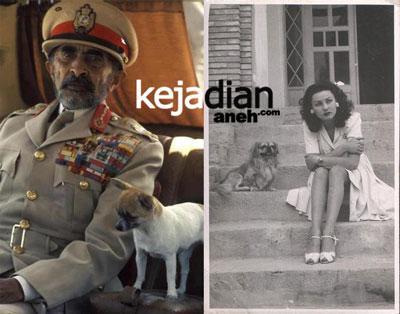 Persahabatan Raja Muslim Dengan Anjing