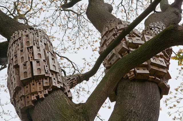 Spontaneous City in The Tree of Heaven by London Fieldworks