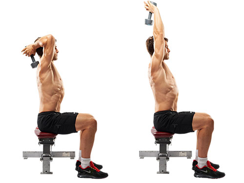 Top Triceps Workouts For Bigger Arms - all-bodybuilding.com