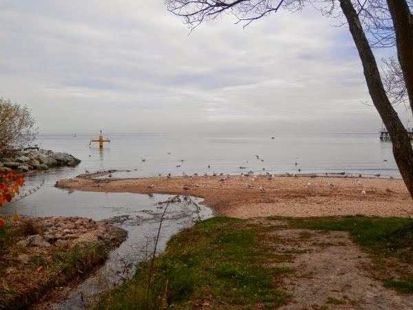 Morze Gdynia