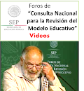 Videos FOROS de CONSULTA NACIONAL