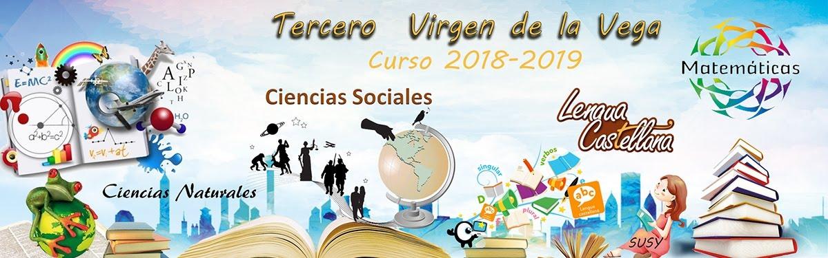 TERCER CURSO E.P. VIRGEN DE LA VEGA