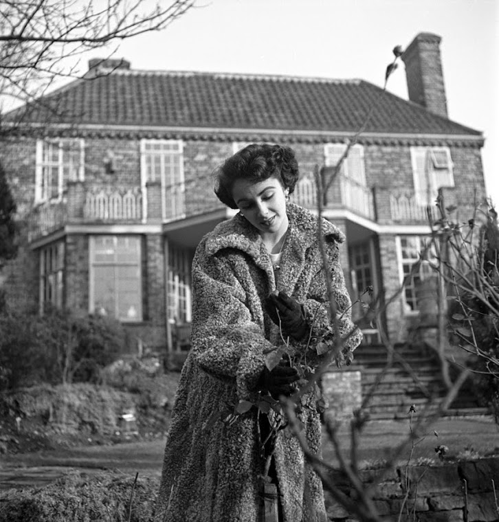 Liz Taylor in 1948.
