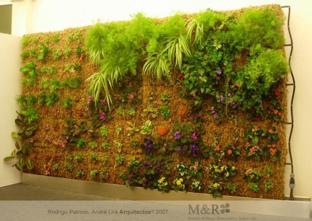 jardim vertical xaxim: bom gosto, assim como as plantas que você gostaria de ter no jardim