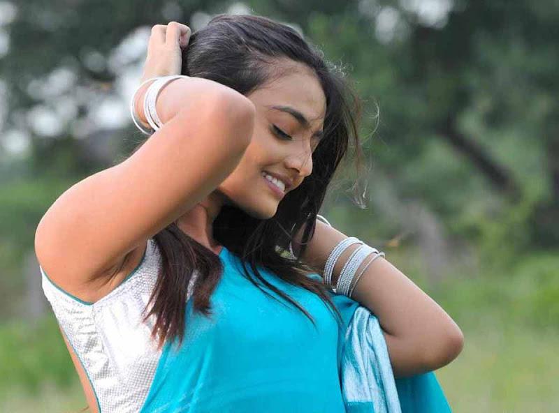 Nikitha Narayan Cool Saree Stills Nikitha Narayan Hot Saree Photos unseen pics