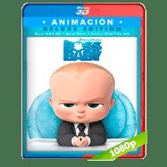Un jefe en pañales (2017) 3D SBS 1080p Audio Dual Latino-Ingles