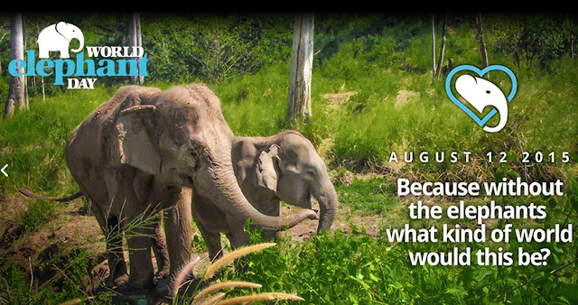 Hari Gajah Sedunia (World Elephant Day)