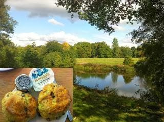 Winkworth National Trust Scones