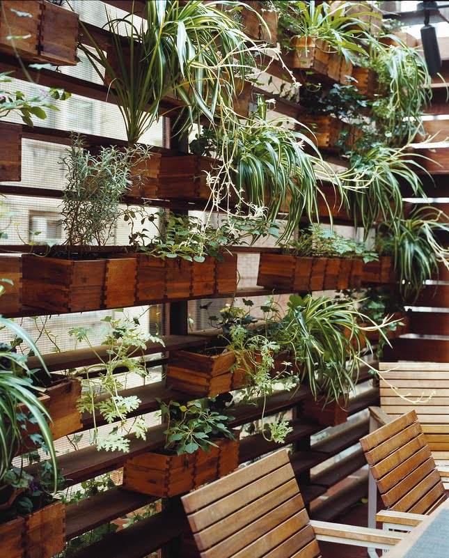 Living wall planter design ideas for house for Wall plants outdoor