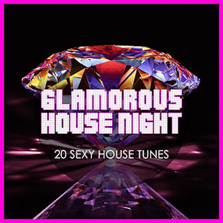 Download – Glamorous House Night – 20 Sexy House Tunes – 2013