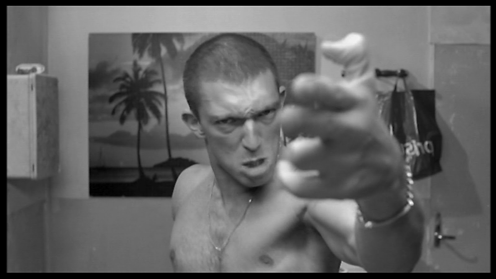 Film la Haine (vincent...