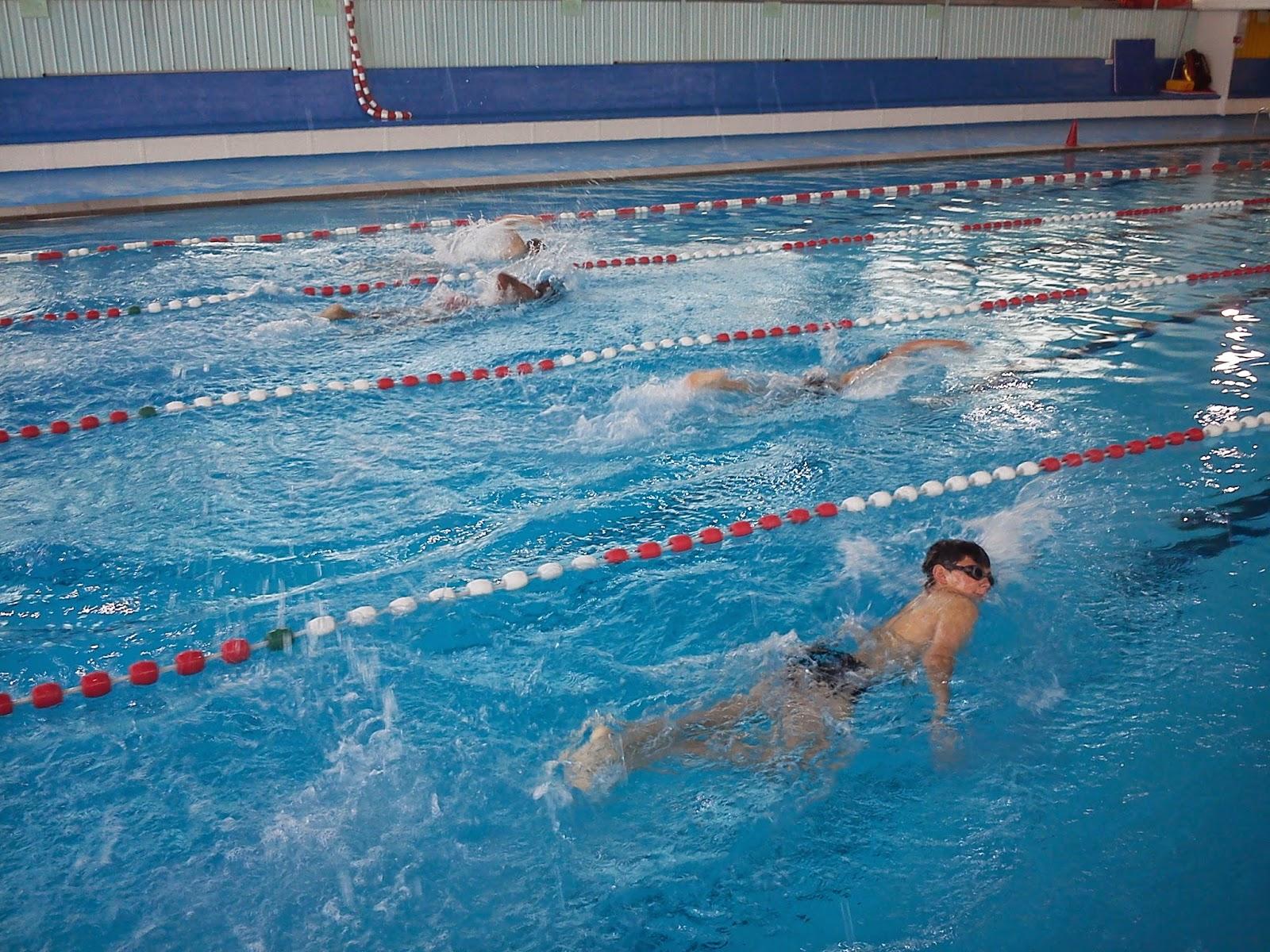 cycle natation 6ème non nageur