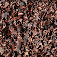 Dried up iris clippings, leaf clippings, and flower greens make easily available mulch throughout the growing season.