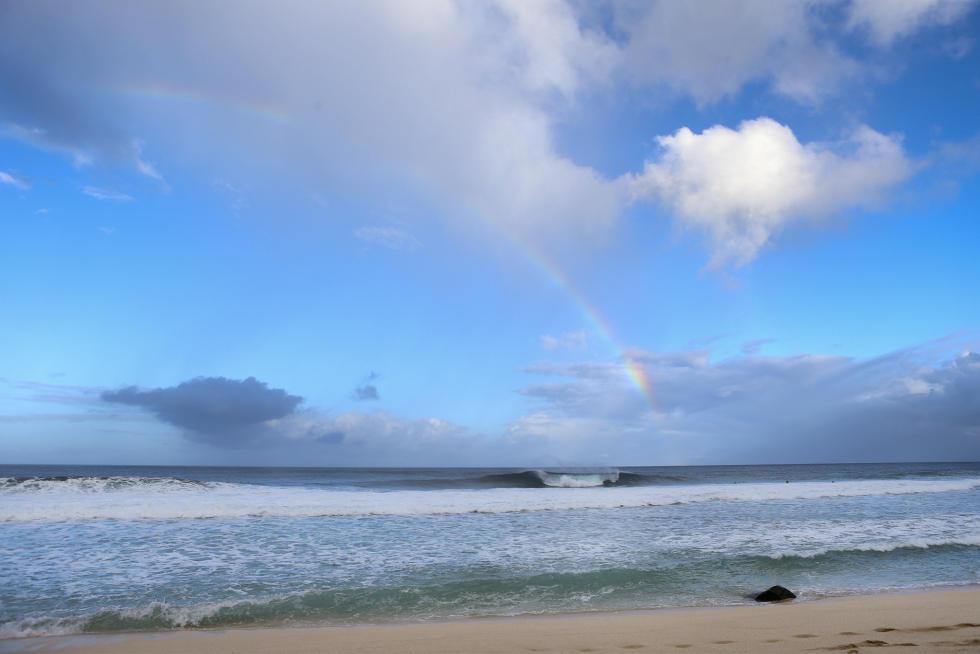 42 Rainbow lineup Billabong Pipe Masters Fotos WSL Kelly Cestari