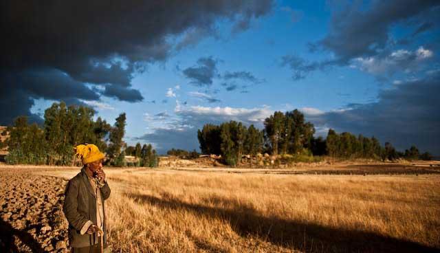 Ethiopian farmer