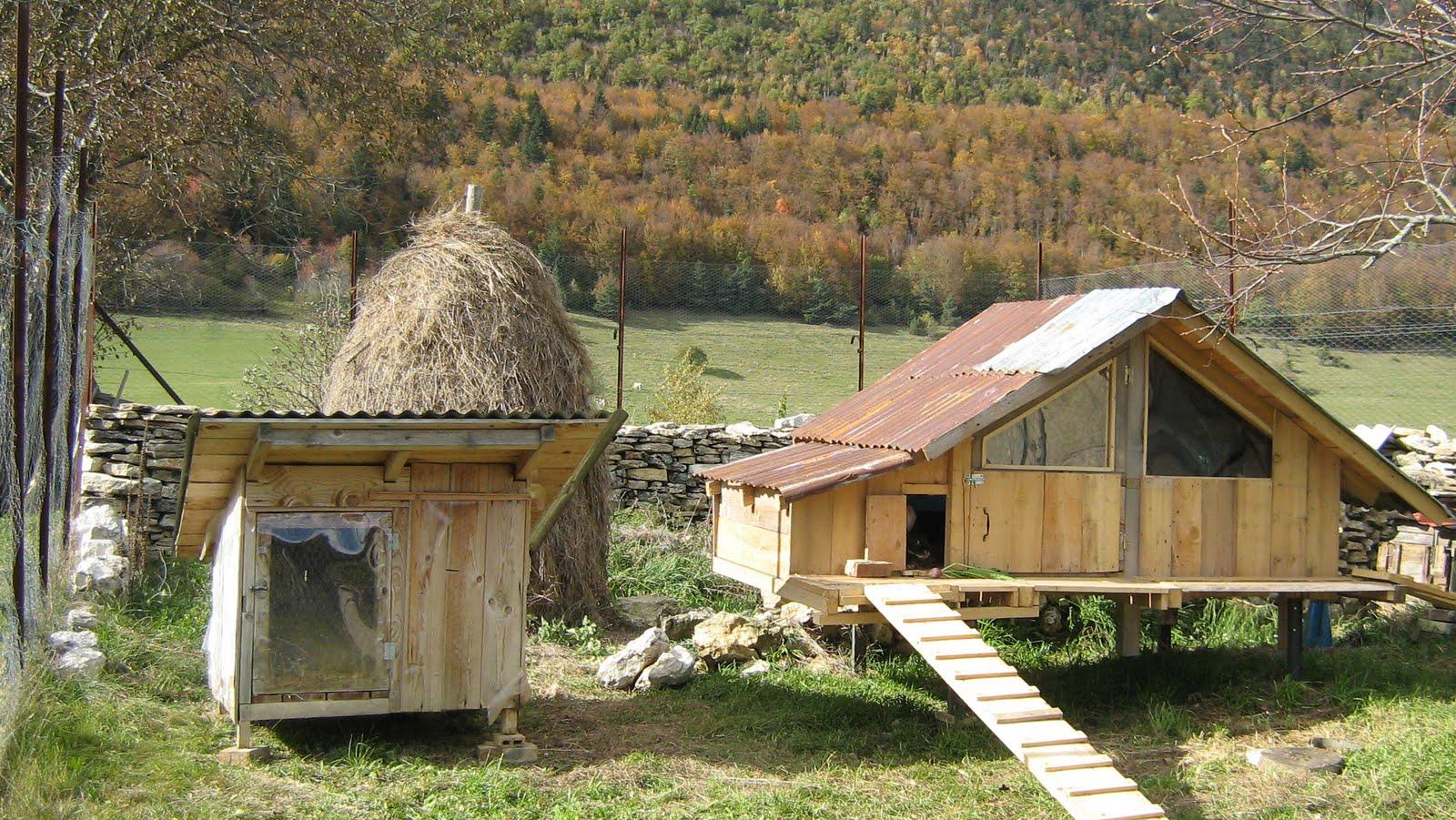 Cabane poules - Cabane a poule ...