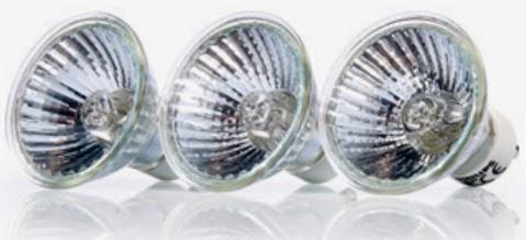 Halogen reflektorowy Philips z Biedronki