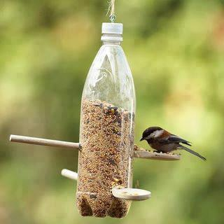 Using of waste bottles to feed the birds