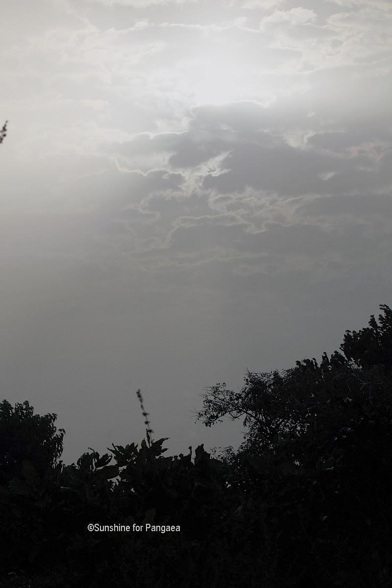 Sunrise during Harmattan in Gambia