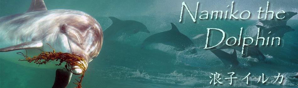 Намико - Дельфин / Namiko the Dolphin / 浪子イルカ