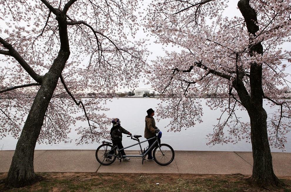 Descubrir el mundo a lomos de una bicicleta