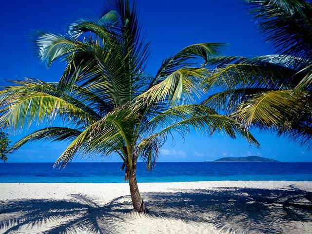 67159082551 As Ilhas Virgens são o oeste do arquipélago das Ilhas Leeward