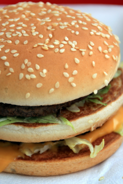 Photo d'un Big Mac - crédit Lord-Phillock