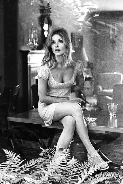 sharon tate, 1960s