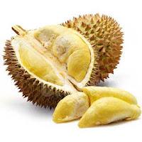 Khasiat dan Manfaat Buah Durian Untuk Kesehatan