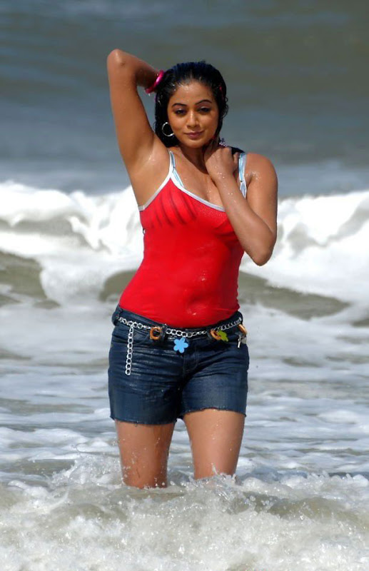 Actress Priyamani Hot Photos From Raaj Telugu Movie Stills unseen pics