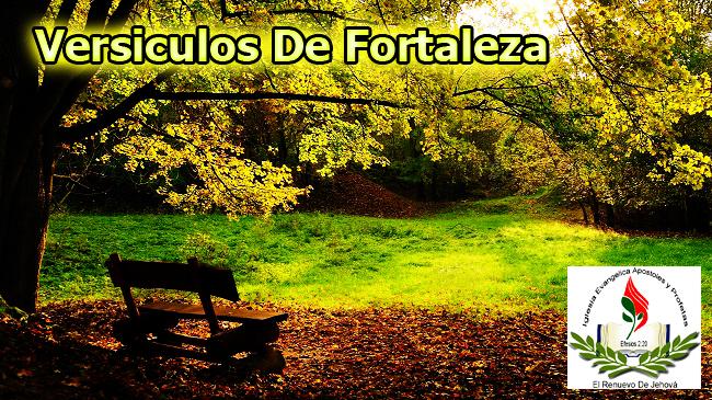 Salmos De Fortaleza Related Keywords - Salmos De Fortaleza