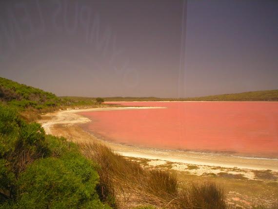 Lacul Hillier - lacul cu apa de culoarea roz