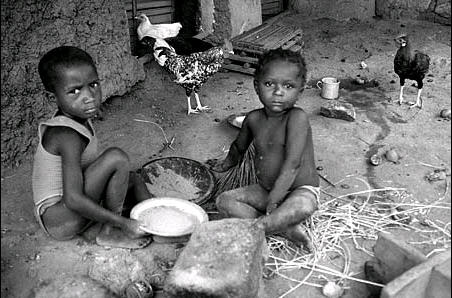 world hunger and poverty essay