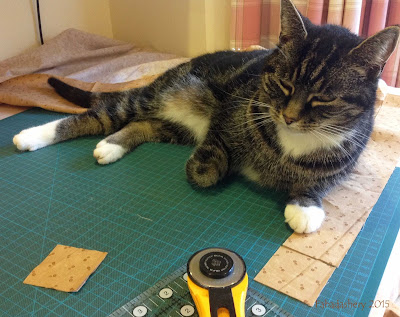 Suzi the cat helps out with rotary cutting