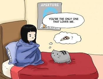 kot, łóżko, rozmowa, pizza, niezrozumienie, dziewczyna