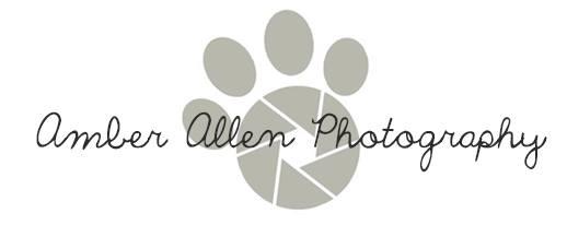 Amber Allen Photography
