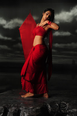 Isha Chawla Hot Wet in Red Saree Photos