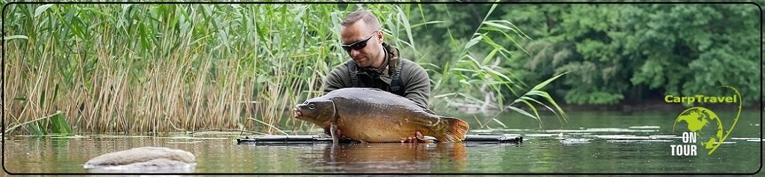 CarpTravel  - Blog