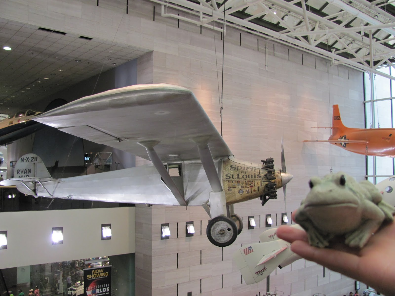 Frog poses with the Spirit of St. Louis at the Smithsonian Air and Space Museum in Washington, DC