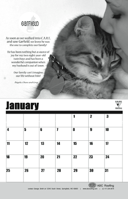Jan 2015 page of calendar supporting animal rescue - cat photo