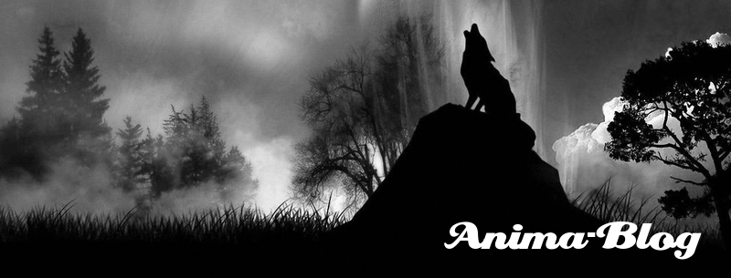 Anima-Blog