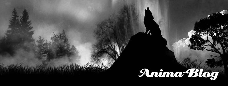 Anima-Blog